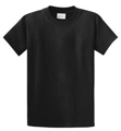 Picture of Port & Authority Essential Tee PC61