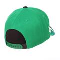 Zephyr North Texas Eagle Snapback Hat
