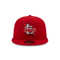 St. Louis Cardinals New Era Local Icon State 9FIFTY Adjustable Snapback Hat
